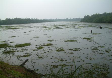 รายละเอียดโครงการ โครงการ อนุรักษ์ป่าและพัฒนาแหล่งน้ำกุดเลาะกุดกว้าง ตำบลนางัว อำเภอนาหว้า จังหวัดนครพนม
